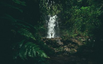 7 Days Later: Edition 20 – A Week of Waterfalls.