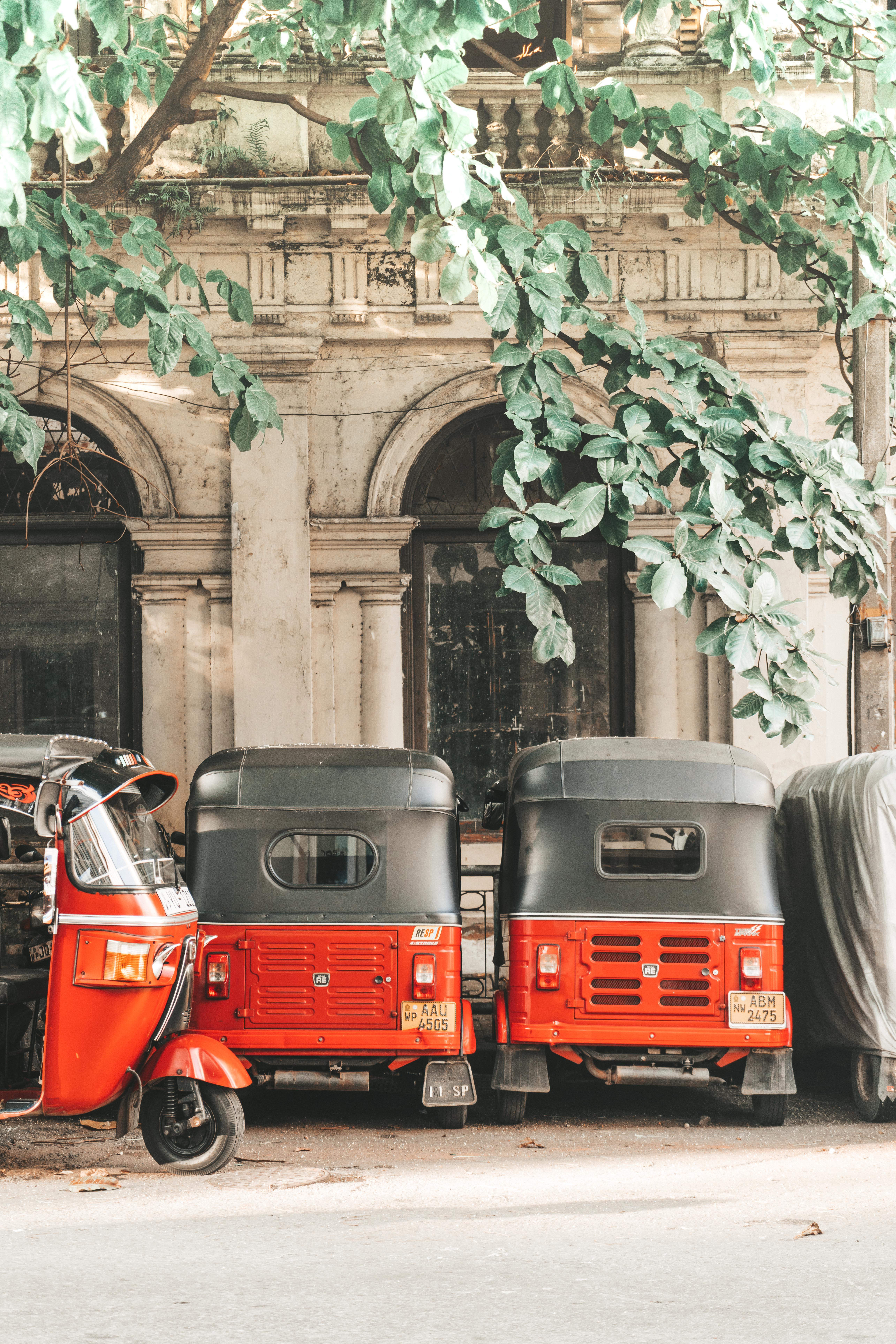 7 Days Later: Edition 36 - Exploring Sri Lanka! - Joshua Lynott